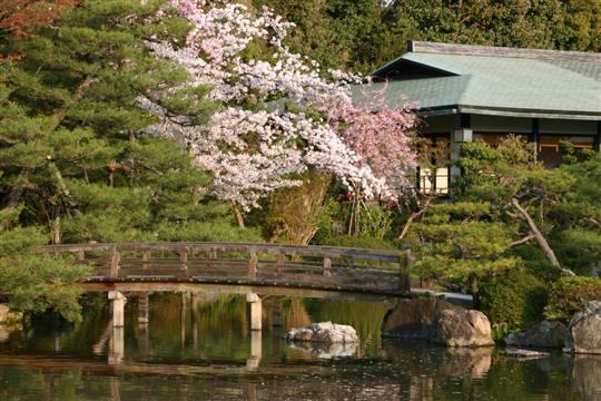 Japonija. Kioto. Heian šventykla