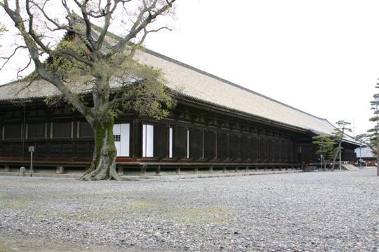 Japonija. Kioto. Sanjusangendo šventykla