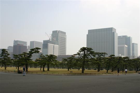 Japonija. Tokijas. Parkas šalia imperatoriaus rūmų