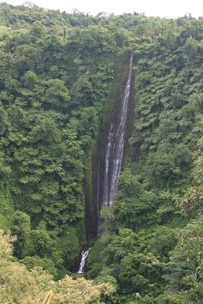 Samoa, Upolu Island, Papapapai Tai Falls / Samoja, Upolu Sala, Papapapai Tai krioklys