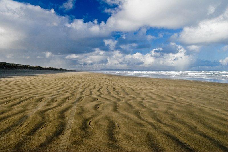 Devyniašdešimt mylių pliažas, Naujoji Zelandija