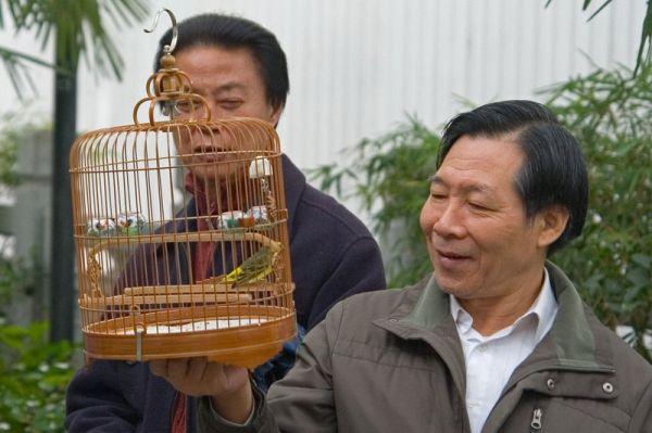 Paukščių turgus Yuen Po gatvėje Honkonge